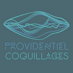 providentiel-coquillage